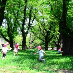 京都の西陣周辺にて運気をアップ!大人のための開運神社散歩